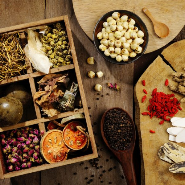 The Power of Herbal Medicine